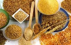 I cereali la potenza del chicco nutrizia - Corso di cucina potenza ...