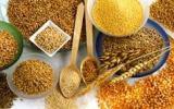 I Cereali, la potenza delchicco