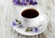 CAFFE CICORIA
