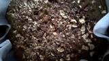 Torta di farina di riso integrale  e canapa con gocce di cioccolata e nocciole: NO glutine, latte e uova, SI alla canapaalimentare!