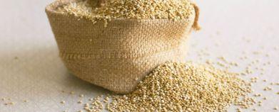 quinoa-986x400